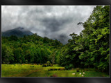 Blackball Greens by LynEve, Photography->Landscape gallery