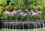 Fountain at Singapore Botanic Gardens by Pistos, photography->waterfalls gallery