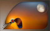 Homage to the Harvest Moon by nmsmith, abstract gallery
