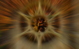 An old Rosette by Heroictitof, photography->manipulation gallery