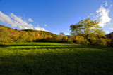 Shadows along the Battenkill by phasmid, photography->landscape gallery