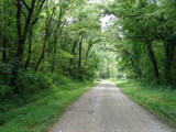 Road to Nowheresville by lilkittees, Photography->Landscape gallery