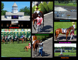 Arlington Racecourse 15 - The Final by trixxie17, photography->general gallery