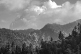 North Carolina Mountains by bfrank, contests->b/w challenge gallery