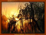 Morning Veil by Mythmaker, Photography->Sunset/Rise gallery