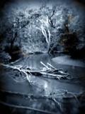 Lost alone by rotcivski, photography->landscape gallery