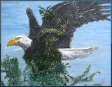 Eagle by rotcivski, illustrations->traditional gallery
