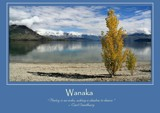 Wanaka Poster by LynEve, photography->landscape gallery
