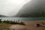 Avalanche Lake Trail: Cats & Dogs by Nikoneer, photography->mountains gallery