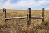 Fence Corner by doughlas, photography->landscape gallery