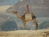 Camel back with city backdrop by burnzdog, photography->people gallery