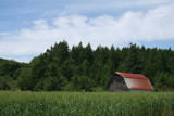 Lonely but Grand Old Barn ! by verenabloo, Photography->Landscape gallery