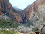 Rain at Zion by petenelson, Photography->Mountains gallery