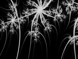 Sparkles on the 4th by catwink20, Abstract->Fractal gallery
