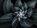 Winter Bloom by jswgpb, Abstract->Fractal gallery