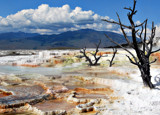 Yellowstone - Beautiful But Toxic 1 by Zava, photography->landscape gallery