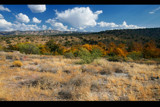 camp verde in the fall by jeenie11, Photography->Landscape gallery