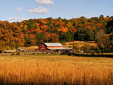 Dixieland Fall by SatCom, Photography->Landscape gallery