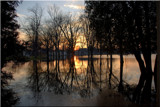 Tree Line Reflect by tigger3, Photography->Sunset/Rise gallery