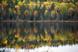 Fall Colors by neilbakker, photography->shorelines gallery