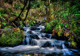 Woodland Falls by WTFlack, photography->waterfalls gallery