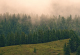 Morning Mist by doughlas, photography->mountains gallery