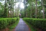 titthimathi ... by nasser30, photography->landscape gallery