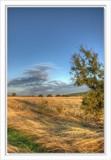 cds 66 by ferit, Photography->Landscape gallery