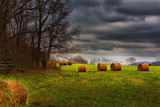 Hay Bales - Natchez Trace Parkway by charlescurtis, Photography->Landscape gallery
