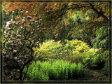 Garden in May by Ramad, photography->gardens gallery