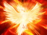 Phoenix Reborn by graphics_pro89, computer gallery
