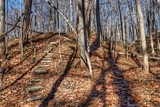Wooded Shadows by tigger3, photography->landscape gallery