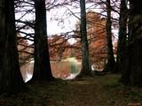 The Company I Keep by jojomercury, Photography->Landscape gallery