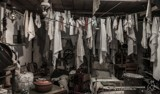 laundry by japio