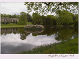 the gardens of Lyme Hall...... by fogz, Photography->Landscape gallery