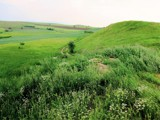 Up the Green Hill by koca, photography->landscape gallery