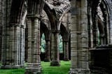 Forest of Dean - Column Intricacies by Homtail, photography->castles/ruins gallery