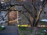 gate to secret garden by kiciaczek, Photography->Landscape gallery