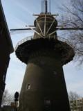 Windmill 'De Walvisch' by 1972Galadriel, Photography->mills gallery
