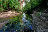 laleshewa streambed by jeenie11, photography->landscape gallery