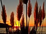 Hidden Sunset by roxanapaduraru, photography->sunset/rise gallery