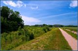 Pastoral Scene by corngrowth, photography->landscape gallery