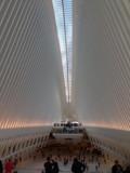 Calatrava Train Station NY by Vickid, photography->architecture gallery
