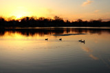 Sunset Silhouettes and Reflections by tigger3, Photography->Sunset/Rise gallery