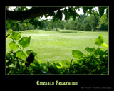 Emerald Relaxation by houstonaxl, Photography->Landscape gallery
