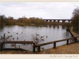 Reddish Vale Country Park by fogz, Photography->Landscape gallery