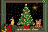 Joy by jem184, holidays->christmas gallery
