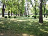 The Park in Skopje by koca, photography->landscape gallery
