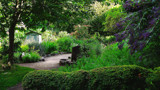 The Walled Garden - A Different View by braces, photography->gardens gallery