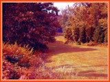Autumn Canvas by paramedyc, photography->landscape gallery